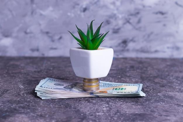 Uma árvore de dinheiro crescente feita de notas e moedas de dinheiro para apoiar pequenas empresas Foto Premium