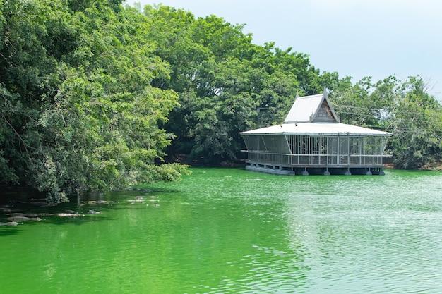 Uma balsa flutuante na fazenda de crocodilos.