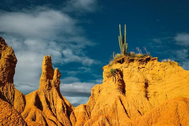 Uma bela foto de penhascos rochosos com cactos no topo de um deserto