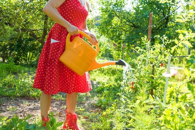 Uma bela jovem em um vestido vintage regando as plantas no jardim.