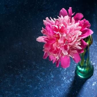 Uma bela peônia rosa suave em vaso verde vidro close-up em pano de fundo texturizado azul escuro em estilo moderno e elegante com sombras. cartão festivo para o dia das mães ou feriado das mulheres. foto quadrada.