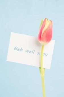 Uma bela tulipa com um cartão bem pronto
