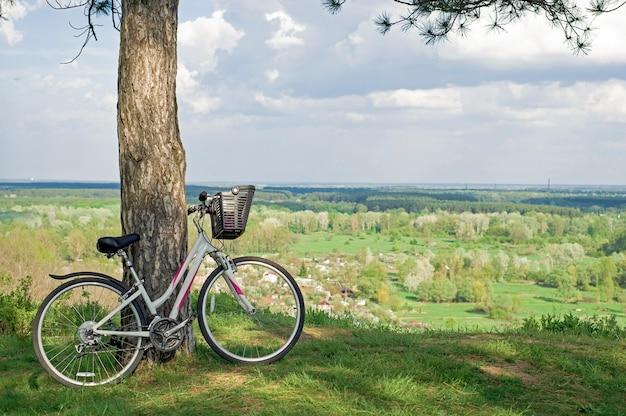 Uma bicicleta branca em uma pequena clareira na floresta encostada em um tronco de pinheiro