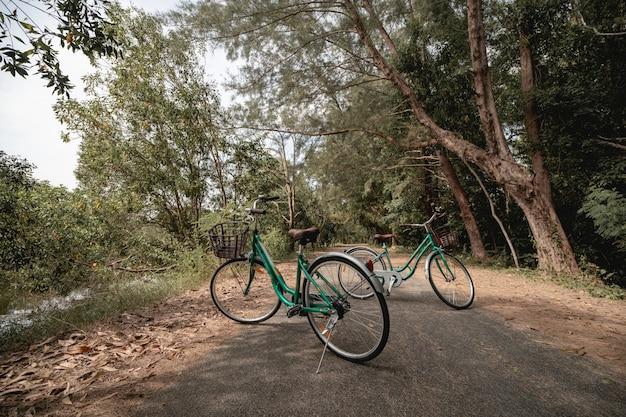 Uma bicicleta na estrada com luz solar e árvore verde no parque ao ar livre.