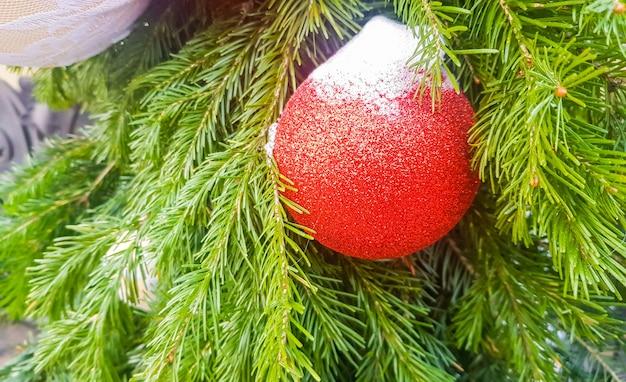 Uma bola vermelha de natal, coberta de neve, no fundo de um galho de abeto, decorações de natal em aberto, banner.