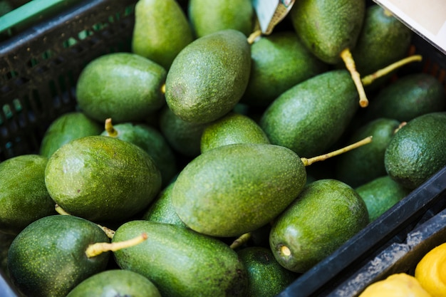Uma caixa de abacates verdes maduros no supermercado