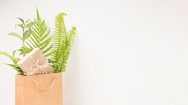 Uma caixa de presente e samambaia verde deixa no saco de papel marrom com espaço para texto