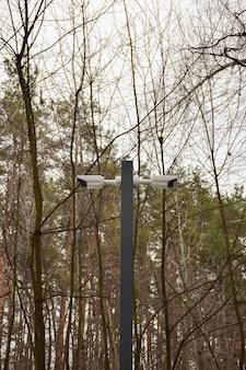Uma câmera de videovigilância está instalada em um poste no parque contra o fundo das árvores
