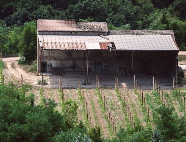 Uma casa de fazenda abandonada perto de campos cultivados