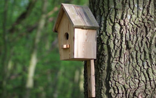 Uma casa de passarinho de madeira para pássaros está pendurada em uma árvore. casa de passarinho com maquete