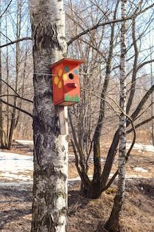 Uma casa de pássaros colorida pesa em uma árvore no parque spring