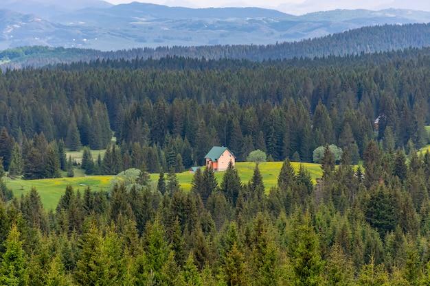 Uma casa solitária está localizada nas montanhas no meio da floresta.