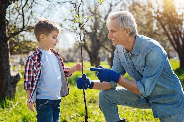 Uma cena de um homem sênior fazendo jardinagem na primavera e conversando com o neto enquanto planta uma nova árvore
