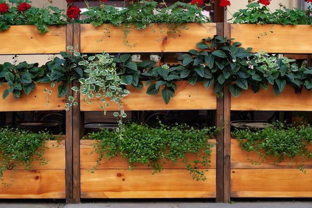 Uma cerca de madeira separa o café da rua com belas plantas ornamentais crescendo nela, decorando o restaurante e criando conforto