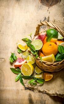 Uma cesta cheia de frutas cítricas -grapefruit, laranja, tangerina, limão, lima e folhas.