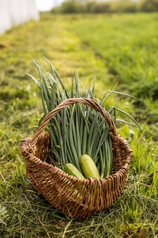 Uma cesta com legumes