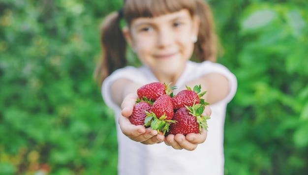 Uma criança com morangos nas mãos