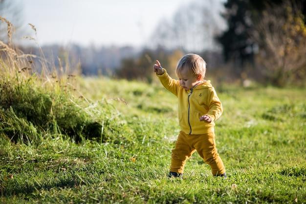 Uma criança com uma jaqueta amarela aponta o dedo para algo em um parque de outono, o verão indiano.