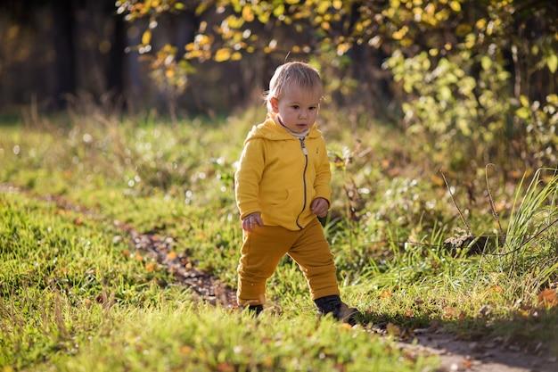 Uma criança com uma jaqueta amarela caminha ao longo de um caminho para um parque de outono, o verão indiano.