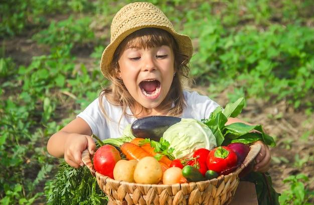Uma criança na horta