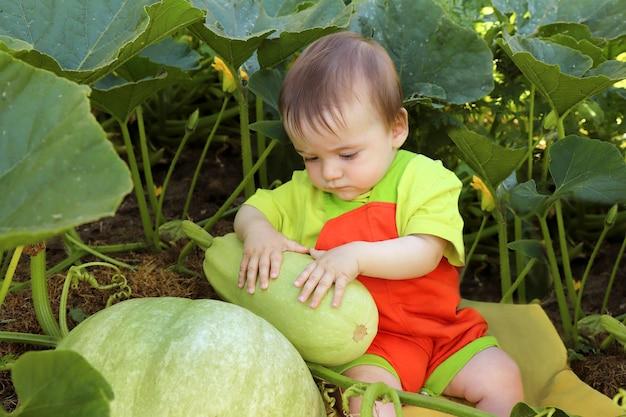 Uma criança pequena está no jardim com abobrinhas e abóboras