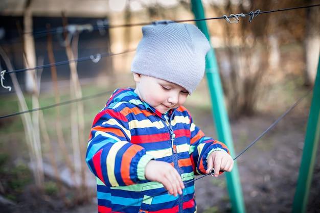Uma criança toca as cordas para a liga de uvas. preparando a videira para a época de frutificação.