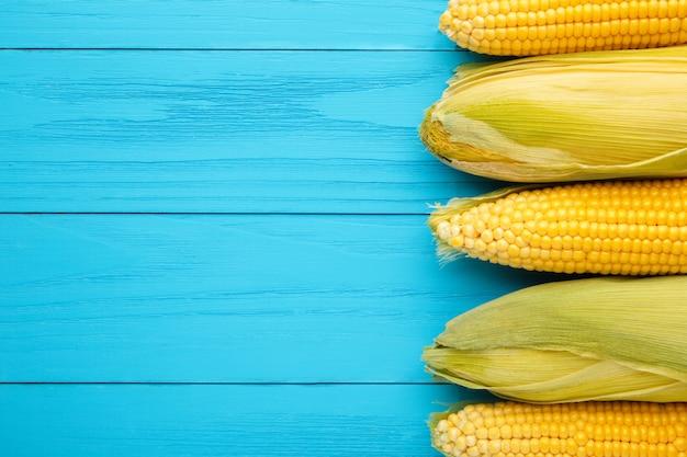 Uma espiga de milho sobre fundo azul com espaço de cópia. vista do topo
