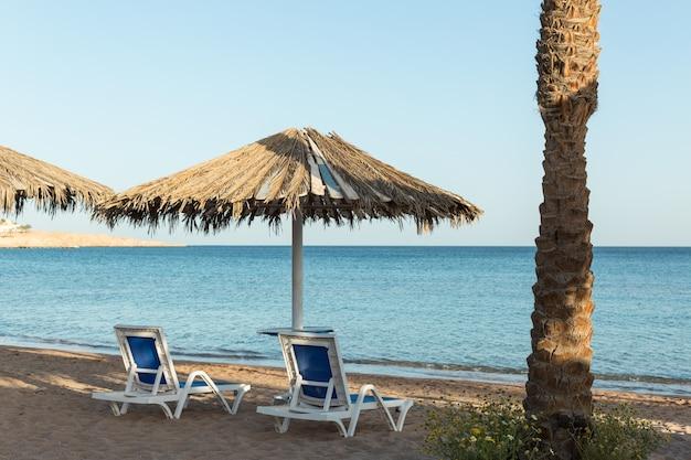 Uma espreguiçadeira sob um guarda-chuva. praia de areia com palmeiras com uma pérgula de metal e espreguiçadeiras de plástico