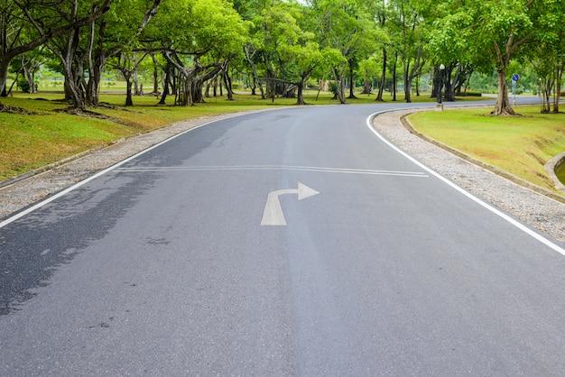 Uma estrada cheia de curvas de verde fresco