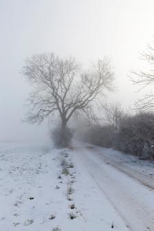 Uma estrada coberta de neve no inverno