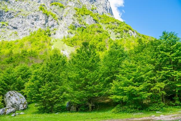 Uma estrada de terra através de uma planície pitoresca entre as altas montanhas.
