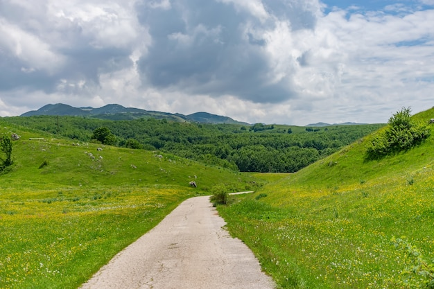 Uma estrada estreita rural passa por prados de montanha.