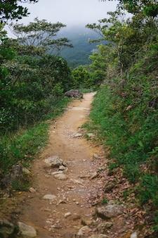 Uma estrada que leva às montanhas verdes
