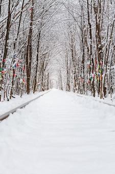 Uma ferrovia no túnel da floresta de inverno do amor