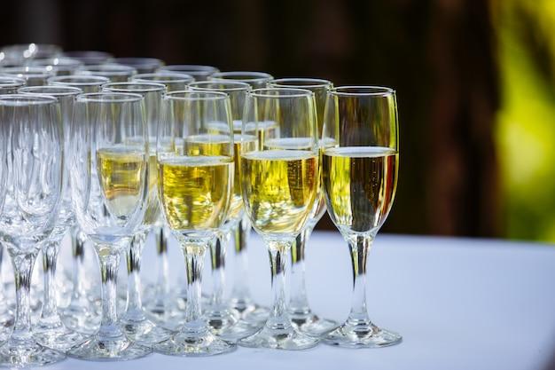 Uma fileira de copos cheios de champanhe estão alinhados, prontos para serem servidos