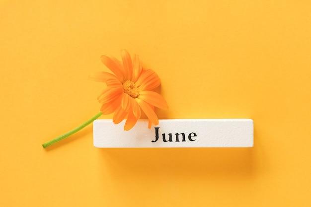 Uma flor de calêndula laranja e o mês de junho em uma peça de madeira branca na superfície amarela