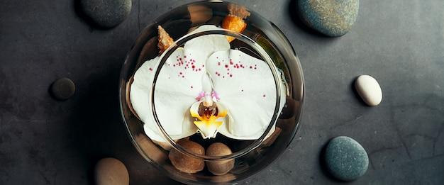 Uma flor de orquídea flutua em um aquário circular