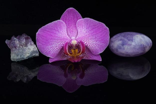 Uma flor de uma orquídea rosa entre diferentes pedras de ametista em um fundo preto
