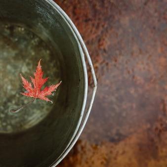 Uma folha de bordo vermelho flutua na superfície da água em um balde de lata.