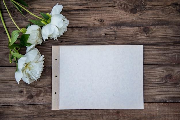 Uma folha de papel e três peônia