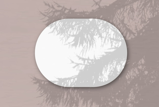 Uma folha oval horizontal de papel texturizado branco na parede rosa