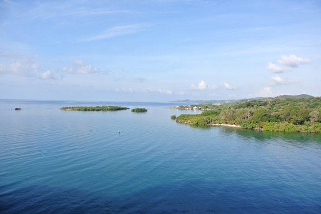 Uma foto aérea das ilhas verdes do ozello community park em crystal, eua