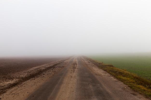 Uma foto de close-up de uma estrada durante um nevoeiro. má visibilidade