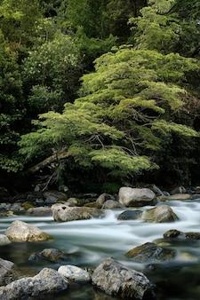 Uma fotografia vertical de um rio fluindo com um efeito de longa exposição.