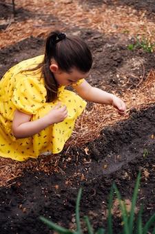 Uma garota com um vestido amarelo se agacha e planta sementes de vegetais saudáveis na família do solo úmido preto ...