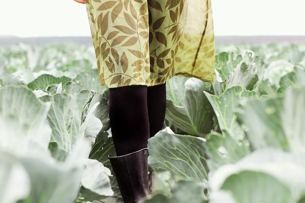 Uma garota com um vestido verde está caminhando por um campo de repolho. jardinagem em uma fazenda de vegetais orgânicos.