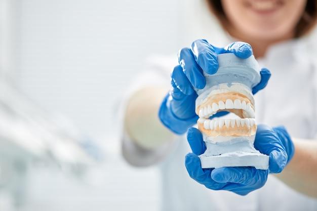 Uma garota dentista segura um modelo de uma mandíbula na mão.