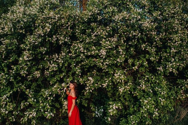 Uma garota em um vestido vermelho com lábios vermelhos está ao lado de uma grande árvore de floração branca ao pôr do sol.