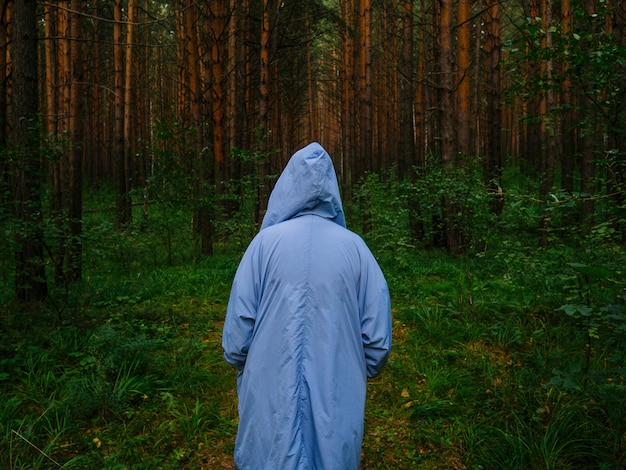 Uma garota em uma capa de chuva azul fica no meio de uma floresta de pinheiros