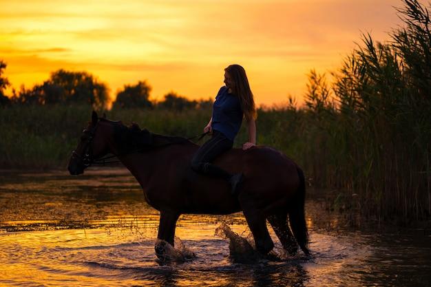 Uma garota esbelta a cavalo está ao pôr do sol. um cavalo está parado em um lago. cuide e ande com o cavalo. força e beleza